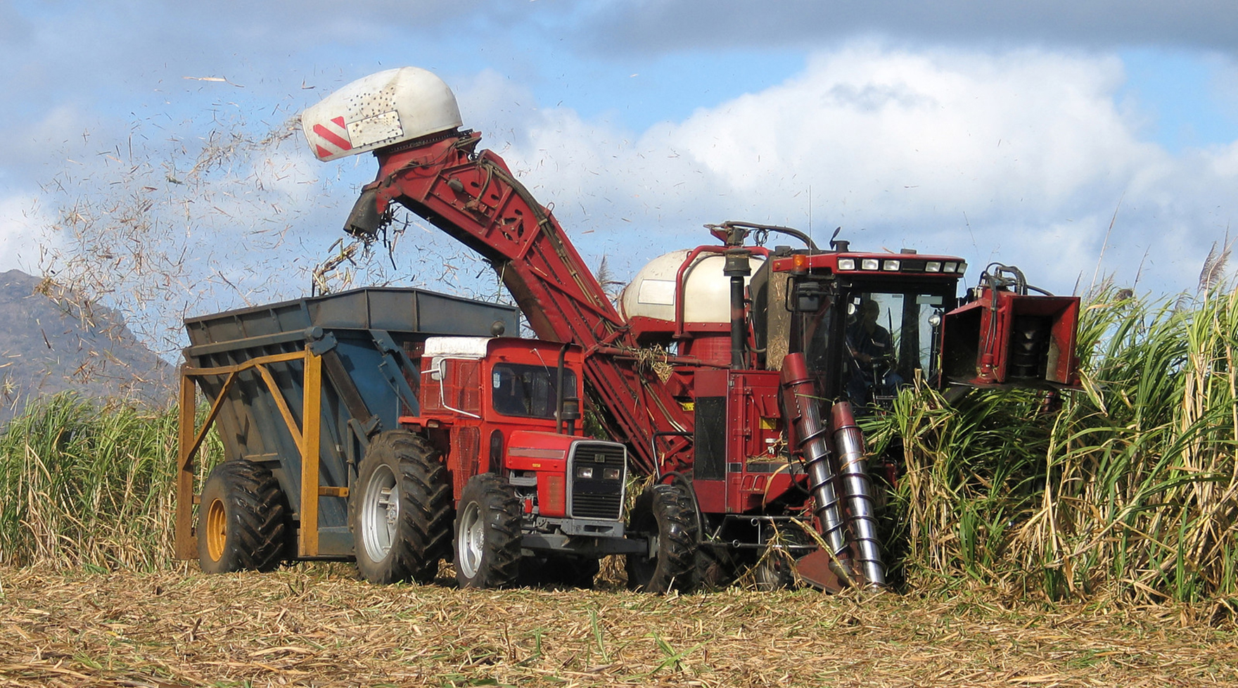 Spare-parts for Austoft Case IH Suger Cane Combines (Harvesters) and Massey Ferguson tractor spare parts.