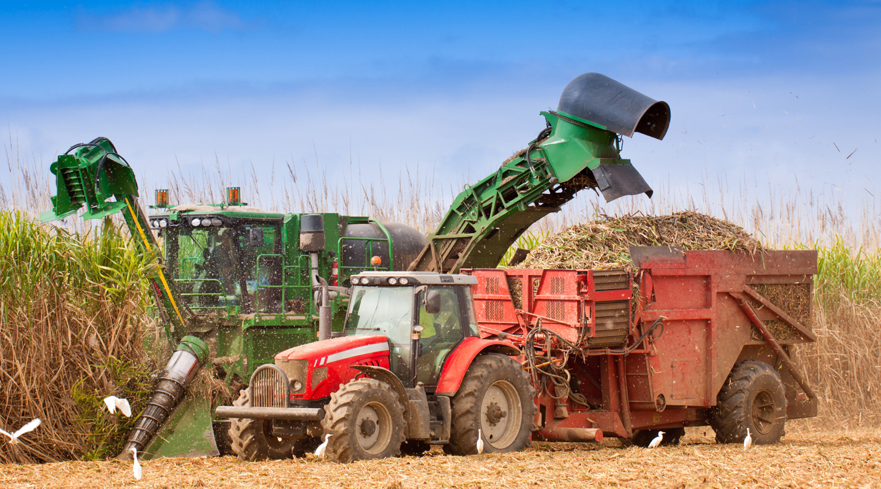 JOHN DEERE and CAMECO sugar cane harvester and agricultural tractors. RAC Germany supplies genuine spare parts.